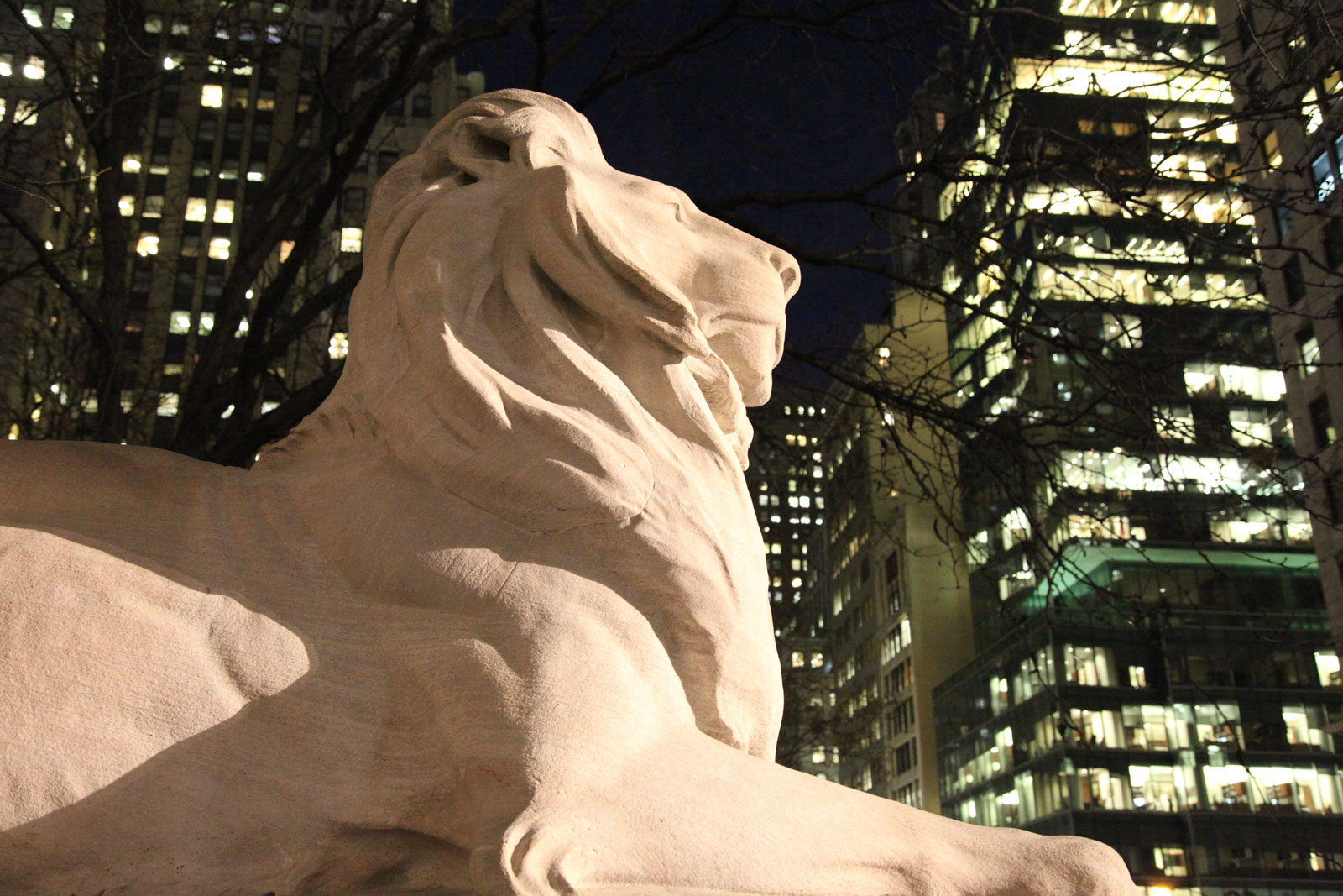 New York Public Library Roars